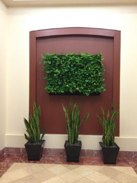 The Photo Below Is Of A Recent Plant Portrait Installation By Atria, Inc.  In Hartford, CT.